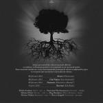 Rădăcini-web