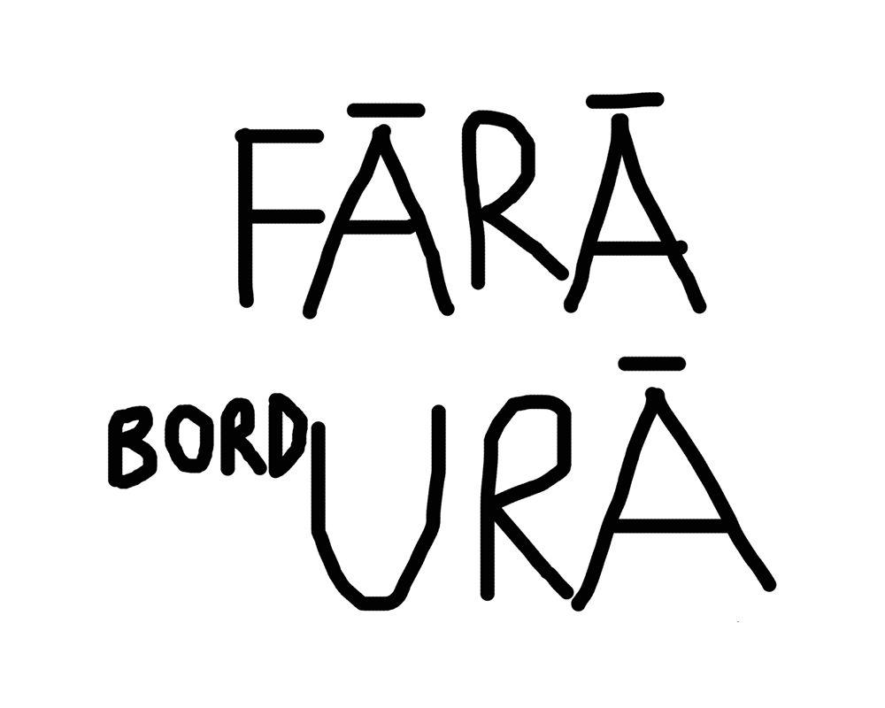 FĂRĂ bordURĂ - Dan Perjovschi